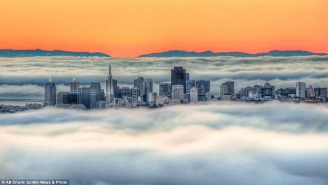 ali-erturk-fog-pic